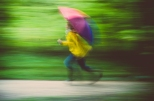 Tag 007 | 22.09.2014 Langzeit bei Regen im Wald