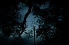 Tag 049 | 03.11.2014 Die Zeit rennt wenn es früh dunkel wird