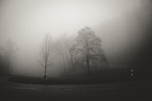 091 | 15.12.2014 Kurve, Nebel, Grau, kein Licht...