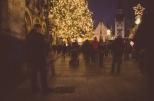 Weihnachtsbaum am Rathaus